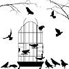 Offene Vogelkäfig und Vögel