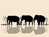 Elefanten überqueren Wasser