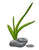Aloe-Blätter und Zen-Steine. Isolieren