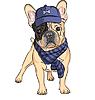 lustigen Comic-Hipster Hund Französisch Bulldog Rasse