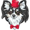 hipster Hunderasse Chihuahua lächelnd