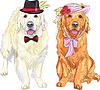 Paar lustige Hunde Labrador Retriever tragen Hüte