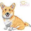 Векторный клипарт: Эскиз собаки корги Пемброк валлийский улыбается