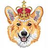 Векторный клипарт: Эскиз собаки Пемброк валлийский корги улыбается в золоте