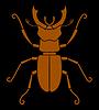 Векторный клипарт: 2489 - жук-олень