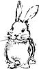 Kaninchen mit langen Ohren | Stock Vektrografik