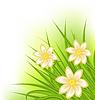Grünes Gras mit Blumen, Frühling Hintergrund