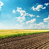 Agriculture fields under deep blue cloudy sky | Stock Foto