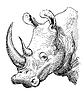 Kunstwerk Nashorn, Skizze Schwarzweißzeichnung