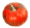 ID 4514908 | Red reif Kürbis | Foto mit hoher Auflösung | CLIPARTO