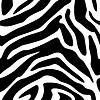 Векторный клипарт: Бесшовные зебры текстуру фона