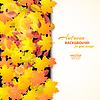 Векторный клипарт: Осенний фон с кленовыми листьями и другими и