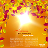 Векторный клипарт: Осень листопад на оранжевом фоне с