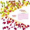 Векторный клипарт: Сезонные фон с осенними листьями и летом