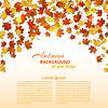 Векторный клипарт: Осенний фон с кленовыми листьями и дуба