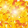 Векторный клипарт: Фон на осеннюю тему падения желтый и