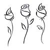 Векторный клипарт: Роза цветет.