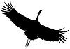 Векторный клипарт: Силуэт черный летающий кран птицы