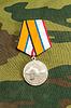 Medaille für die Rückkehr der Krim | Stock Foto