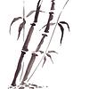 Векторный клипарт: Бамбук в китайском стиле