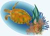 Meerestiere mit Schildkröte, Vektor-Illustration