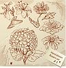 Set von Vintage-Realistische Grafik Blumen - Bilder