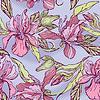 Diseño floral transparente con flores - orquídeas en | Ilustración vectorial