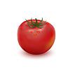 Big dojrzałe czerwone świeżych pomidorów | Stock Vector Graphics