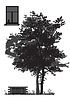 Векторный клипарт: дерево перед домом