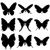 Butterfly silhouette set. Icon collection | Stock Vector Graphics