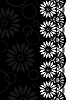 Decorative Border black-white  | 光栅插图
