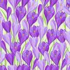 Frühlingsblumen Krokus natürlichen nahtlose Muster
