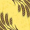 Hintergrund mit Weizenähren