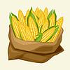 stilisierten Sack mit frischen reifen Maiskolben