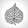 Stilisierte Detail Silhouette der Leaf auf Hintergrund