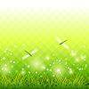 녹색 잔디 잠자리 시즌 배경 | Stock Vector Graphics