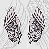 zwei Flügel