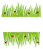 Векторный клипарт: фон с зеленой травой и божьих коровок