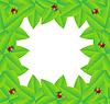Векторный клипарт: фон с зелеными листьями и божьими коровками