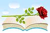 rote Rose auf einem offenen Buch