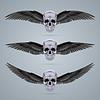 Drei Metall-Chrom-Schädel mit zwei Flügeln