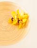 ID 4445294   Holzschale mit Orchideenblüten   Foto mit hoher Auflösung   CLIPARTO