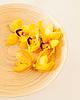 ID 4445357 | Holzschale mit Orchideenblüten | Foto mit hoher Auflösung | CLIPARTO