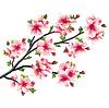 벚꽃 지점, 일본어 나무 사쿠라 | Stock Vector Graphics