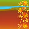 Herbst bunte Tapete mit Blättern