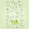 Векторный клипарт: зеленый чай каракули концепция