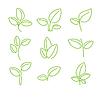 Векторный клипарт: Набор зеленых листьев элементы дизайна