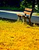 Opuszczone ławki jesienią | Stock Foto