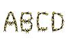 Buchstaben des Alphabets in der Art ethnische gemalt
