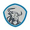 Wütend Texas Longhorn Stier Schild
